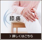 膝痛 >詳しくはこちら